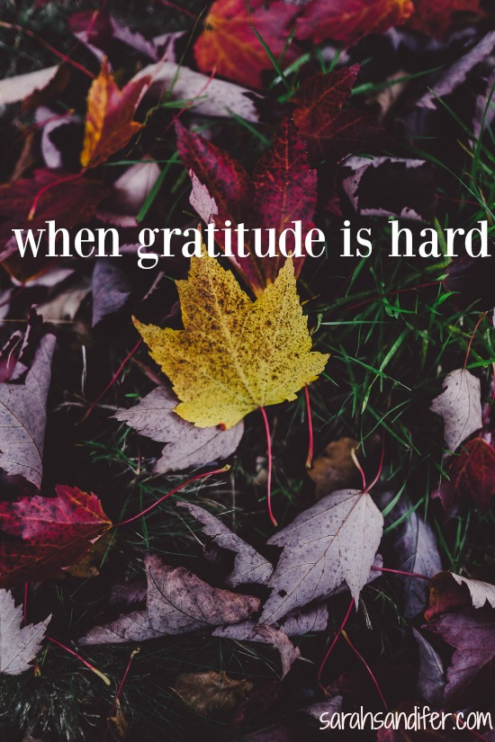 a prayer for when gratitude is hard